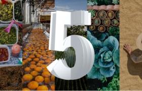 从种子到货架 看IBM创新技术如何在未来五年内改变食品供应链的每个环节